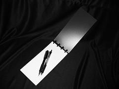 Reporters_notebook_2